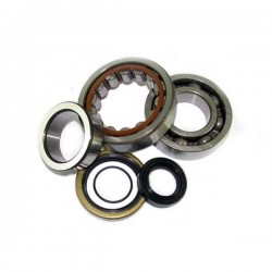 CRANKSHAFT BEARINGS AND OIL SEAL KIT FOR HUSQVARNA TC 125 2014/2017
