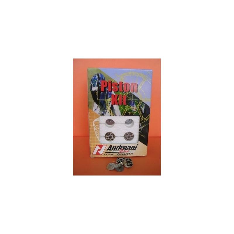 KIT PISTONI IN COMPRESSIONE ANDREANI PER HONDA HORNET 600 2007/2013