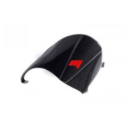 CARBON FIBER CLASSIC SINGLE ARM REAR FENDER FOR DUCATI MONSTER