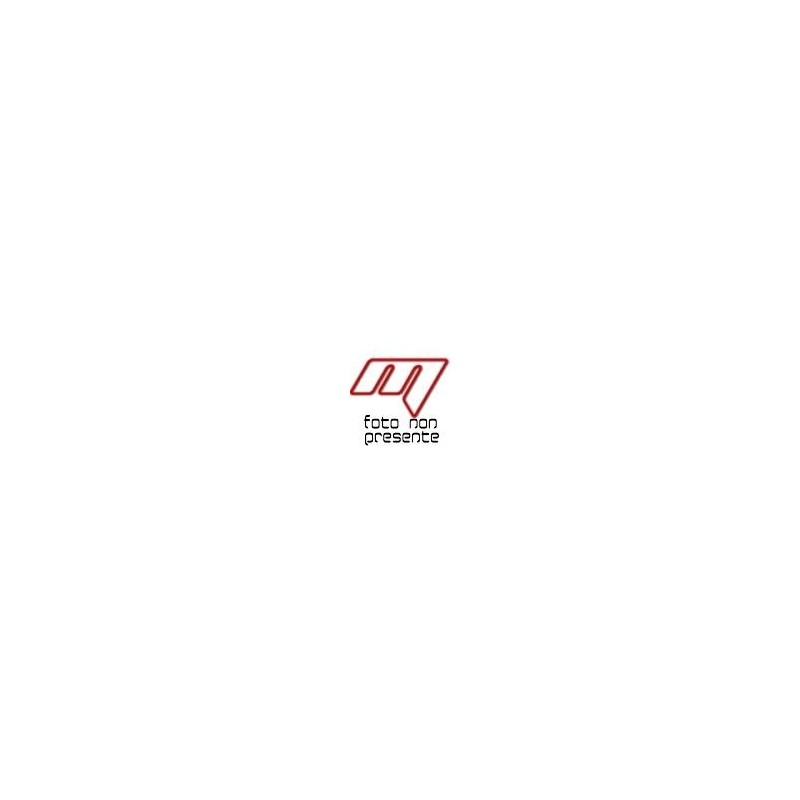 PORTAVALIGIE LATERALE PL3112 PER VALIGIE MONOKEY PER SUZUKI V-STROM 650 2017/2018
