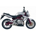 MIVV X-CONE STAINLESS STEEL EXHAUST PIPE FOR KAWASAKI ER-6N/ER-6F 2006/2011, APPROVED
