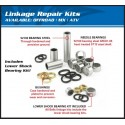 Linkage revision kit